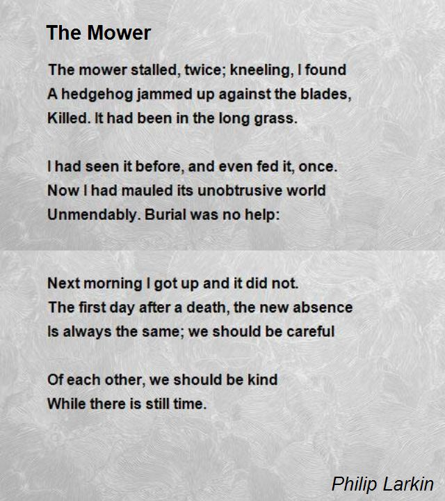 the-mower
